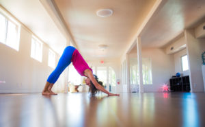 Beginners Yoga with Jeannette